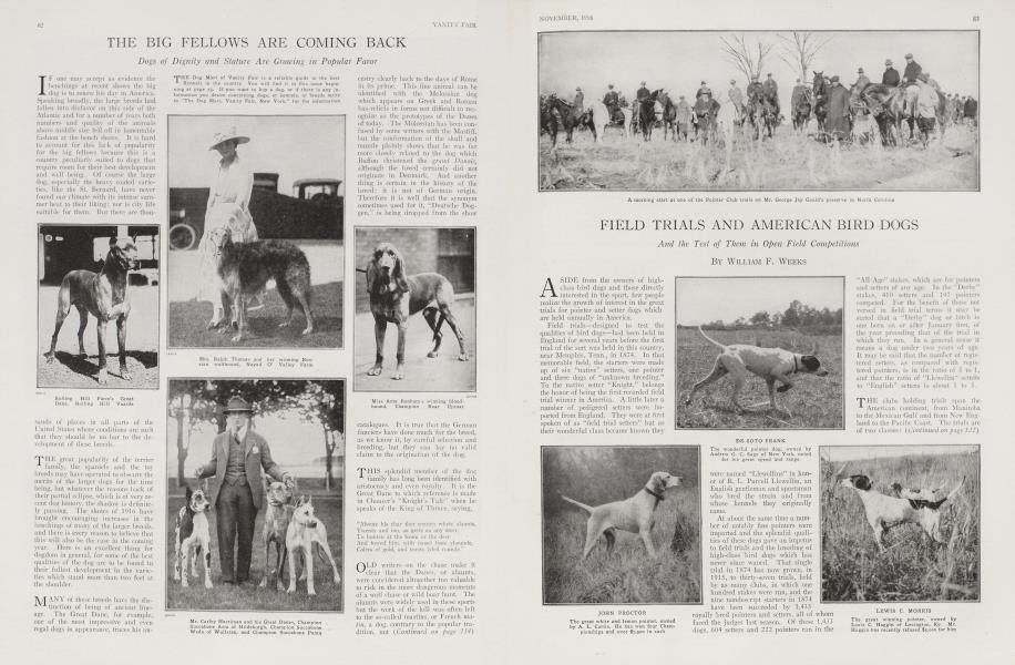 FIELD TRIALS AND AMERICAN BIRD DOGS