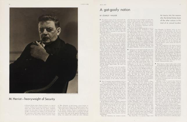 Article Preview: A gat-goofy nation, July 1933 | Vanity Fair