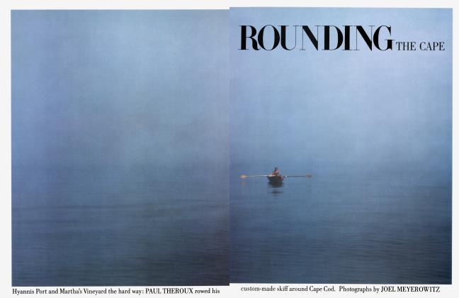 Article Preview: ROUNDING THE CAPE, June 1984 | Vanity Fair