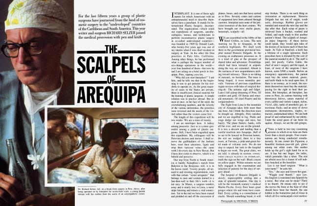 THE SCALPELS OF AREQUIPA