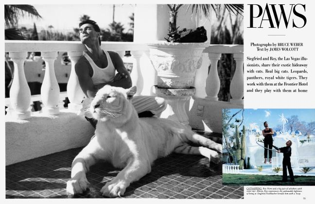 Article Preview: PAWS, February 1986 1986 | Vanity Fair