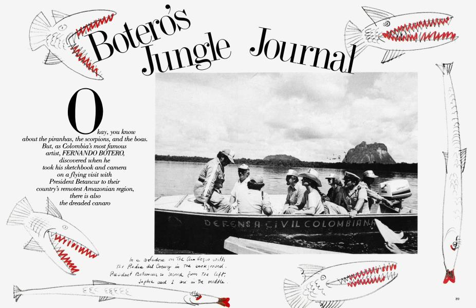 Botero's Jungle Journal
