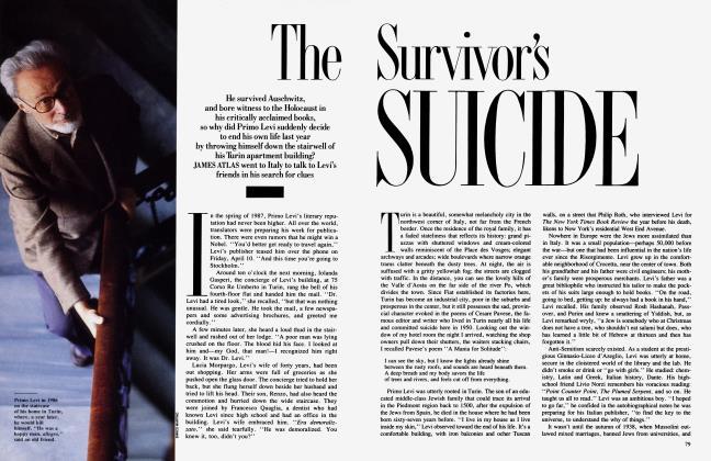 The Survivor's Suicide