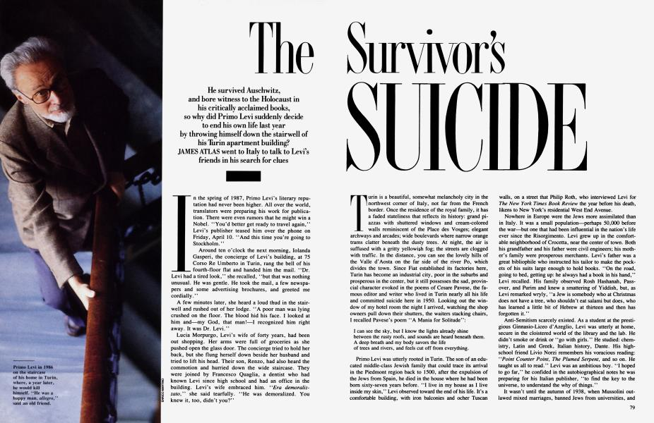 The Survivor's Suicide
