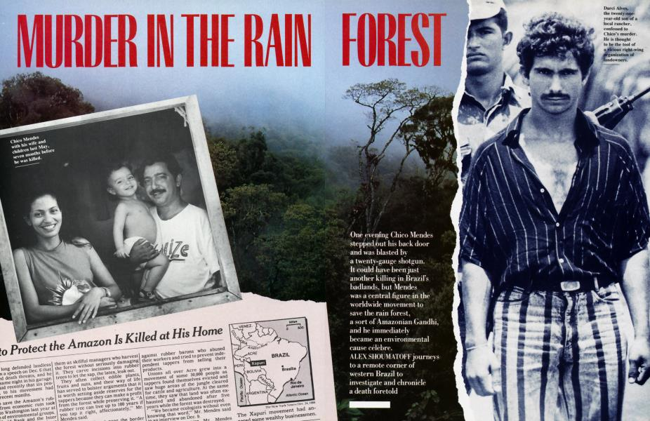 MURDER IN THE RAIN FOREST