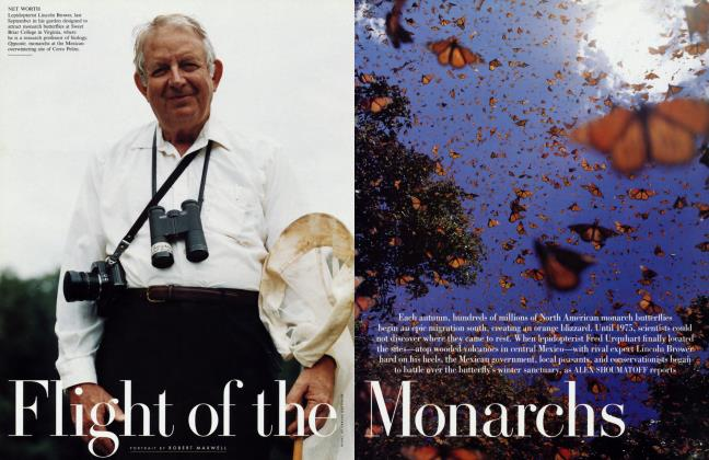 Article Preview: Flight of the Monarchs, November 1999 | Vanity Fair