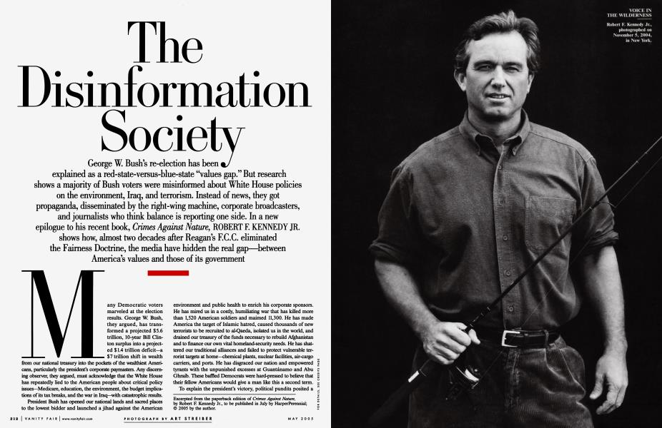 The Disinformation Society