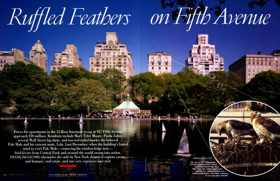 Ruffled Feathers on Fifth Avenue