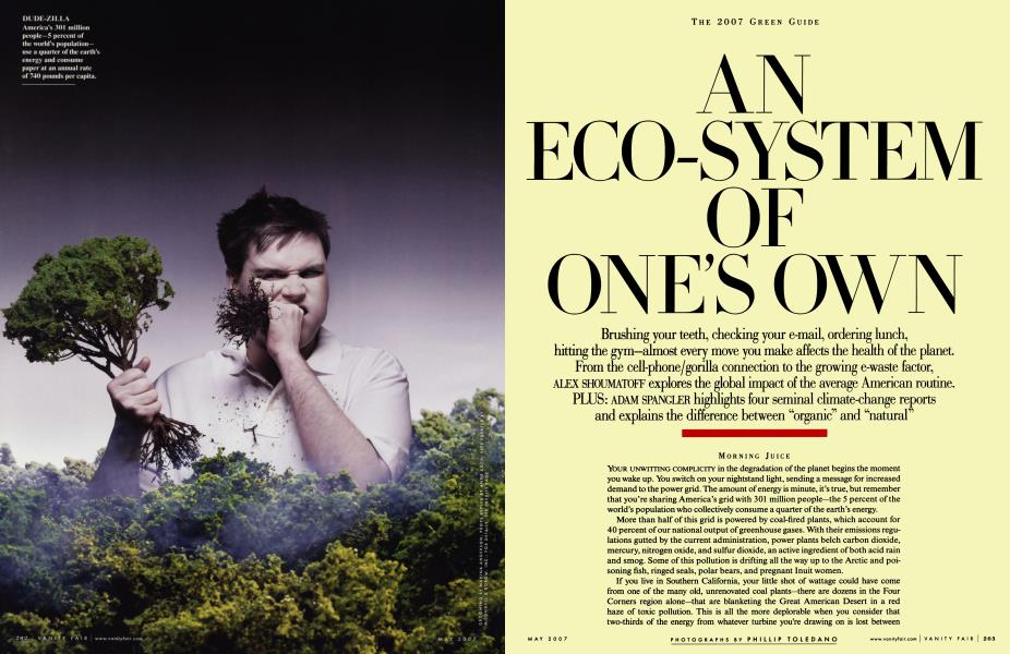 THE 2007 GREEN GUIDE AN ECO-SYSTEM OF ONE'S OWN