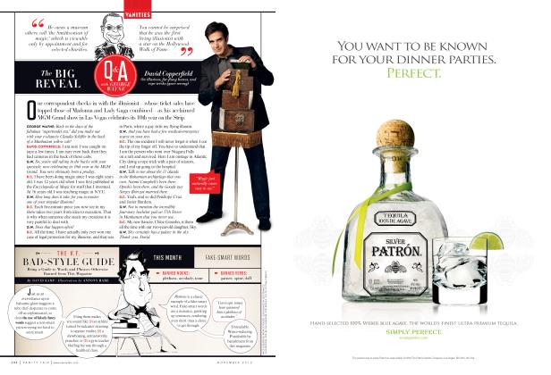 Article Preview: THE V.F. BAD-STYLE GUIDE, November 2012 2012 | Vanity Fair